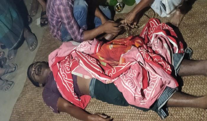 মানিকগঞ্জের সিংগাইরে সাপের কামড়ে সোহেলের মৃত্যু